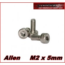 STAINLESS STEEL SCREWS ALLEN M2 X 5