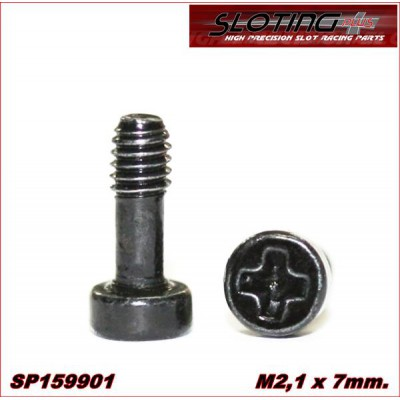 SPECIAL STEEL SCREW FOR BODY