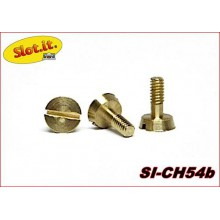 METRIC SCREWS 2,2x5,3mm. (LARGE HEAD)